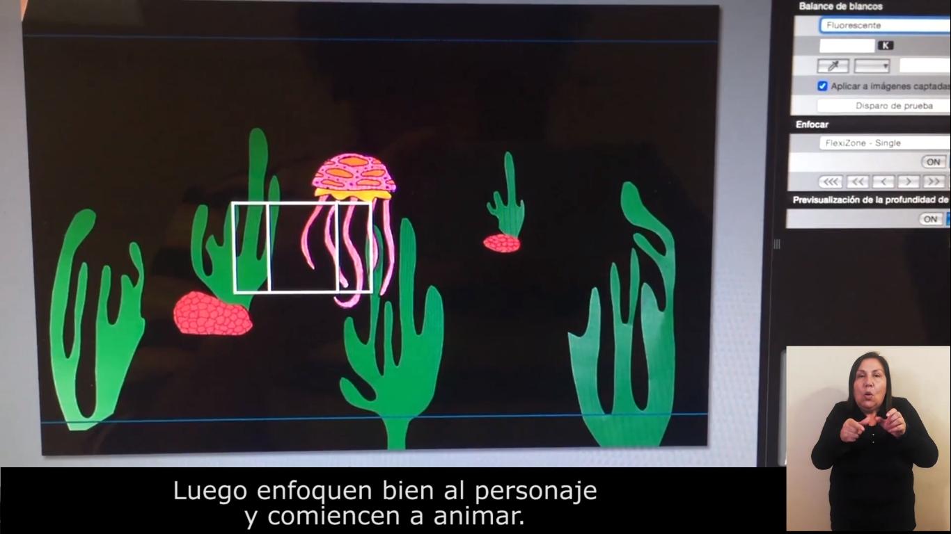 Cámara enfocando medusa de color rosado entre algas de cartulina, en un fondo negro
